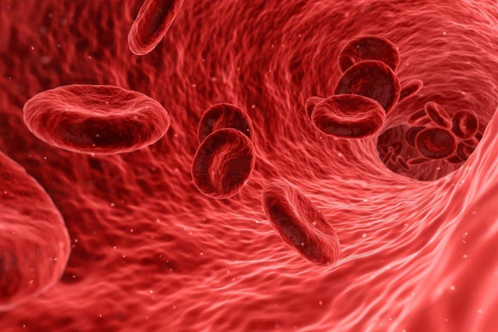 kvapka krvi pod mikroskopom